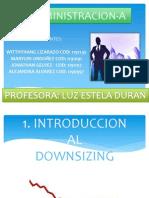 downsizingadministracion-130223220641-phpapp02
