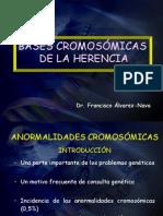Anomalias  cromos-¦ómicas Primera Clase