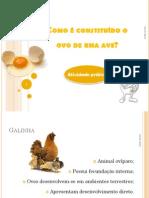 Como é constituÃ-do o ovo de uma ave (1).pdf