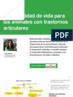 AV_22_Mejor Calidad de Vida Para Los Animales Con Trastornos Articulares