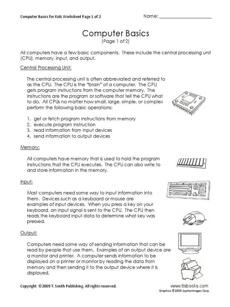 Computer Basics Inputoutput Central Processing Unit
