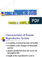 Female Reproductive Sytem