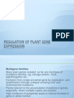 Regulation of Plant Gene Expression