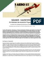 Baeumer_Sausewind