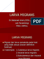 Larva Migrans