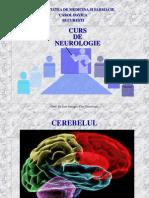C3 cerebel