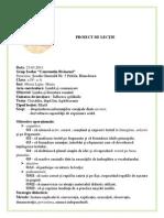 Proiect Didactic Ciocarlia 2