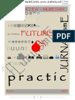 39657729 JURNALismE Practic