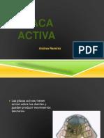 Placa Activa