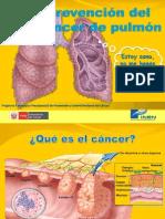 4.1. ROTAFOLIO - Prevencion Del Cancer de Pulmon