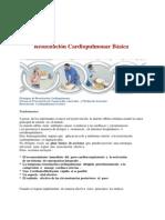 RCP PUBLICAR.pdf