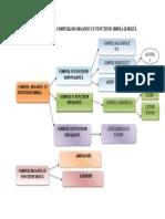 Clasificarea compusilor organici cu functiuni