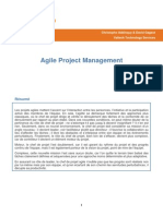 AG06 AgileProjectManager Article