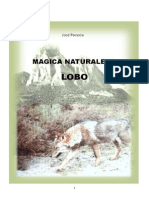 Jose Po Veda Magic a Natural Ez a Lobo