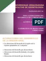alteracionesdeldesarrollodelaregionoral-110429223119-phpapp02