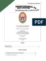Contaminacion Ambiental Grupo[1]