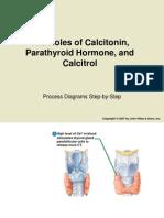 The Roles of Calcitonin, Parathyroid Hormone & Calcitrol