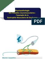 DCEM2 Neuromusc.pdf