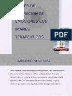 CURSO TALLER (4 CLASES) CODIGO DE LA EMOCIOìN