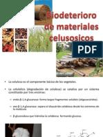 Biodeterioro (1)