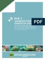 BAB 3 GAMBARAN EKSISTING KABUPATEN LINGGA.pdf