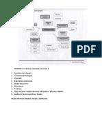 ESTRUCTURA CONCEP LEC II.docx
