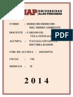 Ta Derecho Del Medio Ambiente Cod. 2012104716