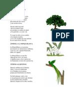 1 Poema a La Ceiba
