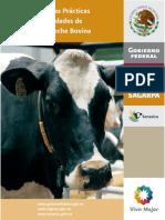 MANUAL DE BPP EN PRODUCCIÓN DE LECHE BOVINA 2010.pdf