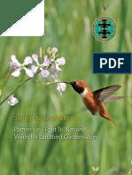 PIF2010_English_Final.pdf