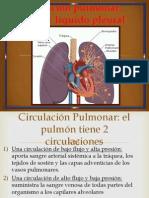 Circulación pulmonar, edema y líquido pleural 38