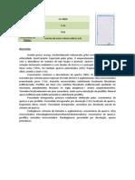 descrição de lâminas sedimentares