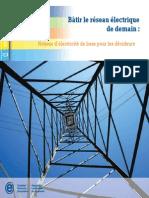 1490_cea_fr_d3 - 2009 - Bâtir le réseau électrique