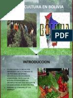 La Agricultura en Bolivia