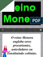 A p Point Reino Monera2007 Grav 091020091037 Phpapp01