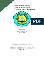 Eko Prayugo Saputro (14.401.11.029) Laporan Pendahuluan Rhd