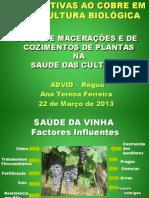 Produtos fito sanitários para horta