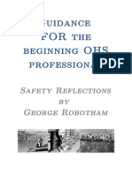 Guidance for OHS Professionals V2