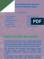 Kelompok 6 Hub Struktur, Kelarutan Dan Aktivitas Biologis Obat