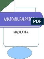 Anatomia Palpatoria Muscular1