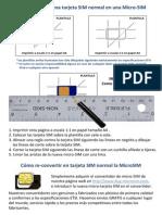MicroSIM Template.pdf