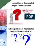 Hubungan Sistem Reproduksi Dengan Sistem Lainnya