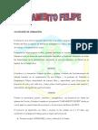 Documento CAMFEL 2011