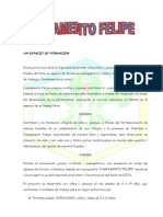 Documento CAMFEL 2011