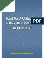 Planeacion y Realizacion Pvt