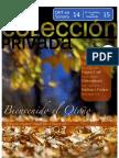 Colección Privada 26
