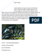 Editorial Streicher