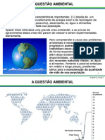 Questão Ambiental1