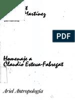 Prat y Martinez (eds.) - Ensayos de antropología cultural.pdf