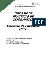 Informe_CES.docx